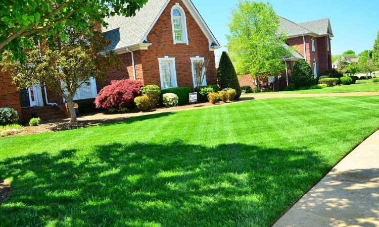 Lawns and Gardens
